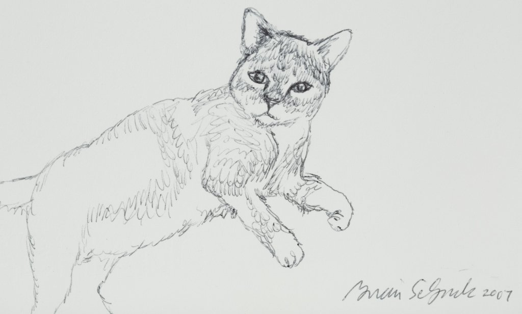 Brian Selznick Letter & Cat Sketch. - 2