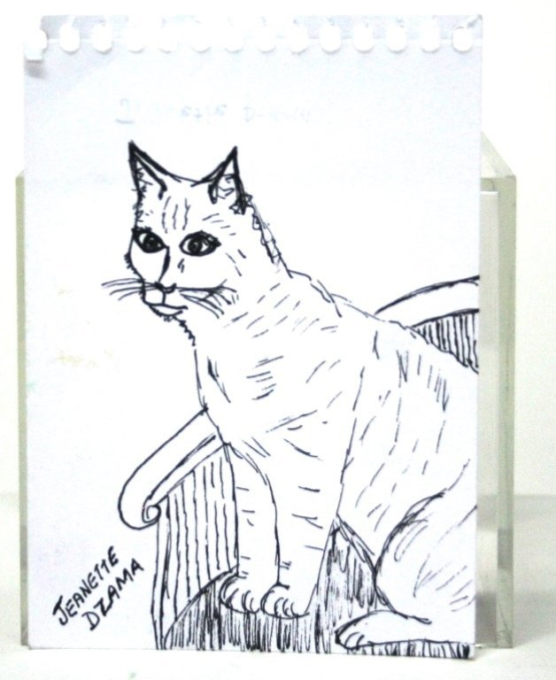 Cat Sketches from Members of The Royal Art Lodge. - 5