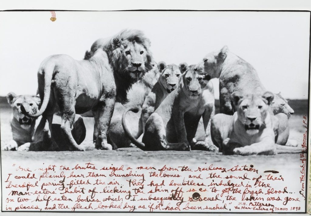 Peter Beard (US/New York, b. 1938). - 2