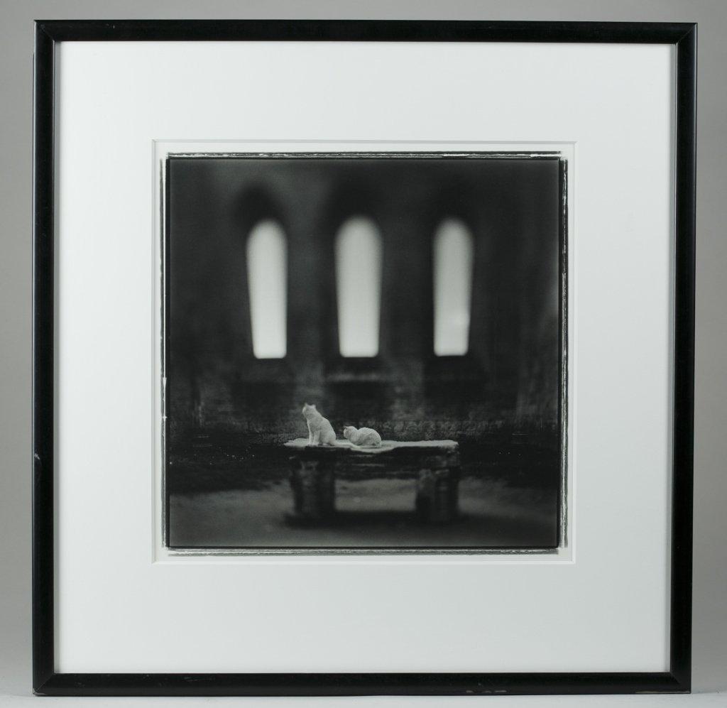 Keith Carter (US/Wisconsin, b. 1948).