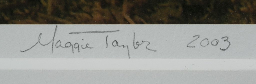 Maggie Taylor (US/Ohio, b. 1961). - 5