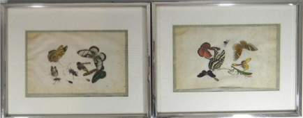 2 CHINESE BUTTERFLY INSECT ON SILK PAINTINGS