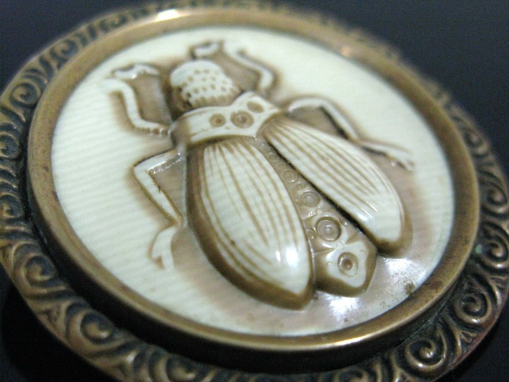 MOST UNUSUAL CELLULOID & BRASS INSECT BROOCH / PIN