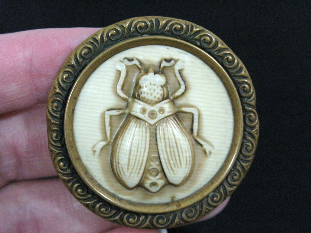 MOST UNUSUAL CELLULOID & BRASS INSECT BROOCH / PIN - 2
