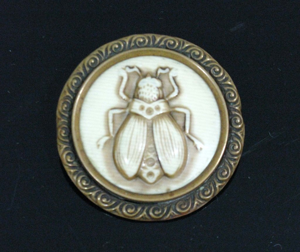 MOST UNUSUAL CELLULOID & BRASS INSECT BROOCH / PIN - 3