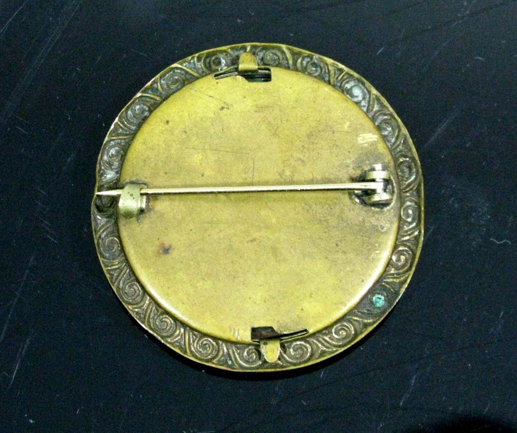 MOST UNUSUAL CELLULOID & BRASS INSECT BROOCH / PIN - 4
