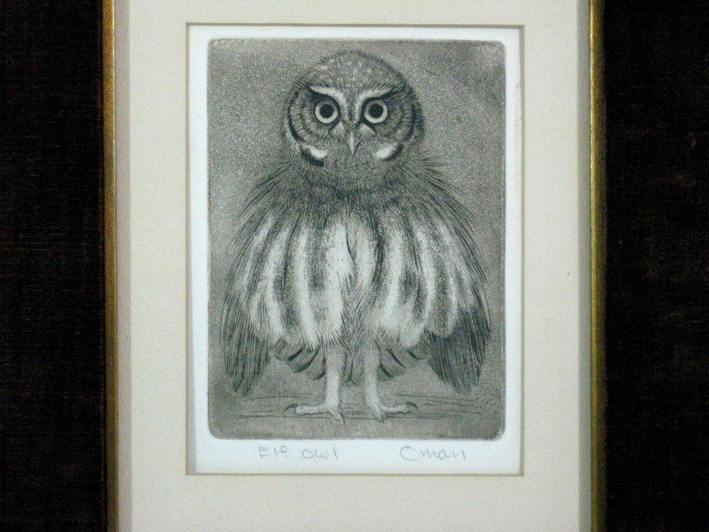 SHERIDAN OMAN SIGNED ENGRAVING ELF OWL
