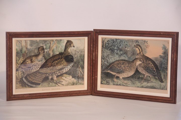 Currier & Ives Hand Colored Prints Quail & Grouse