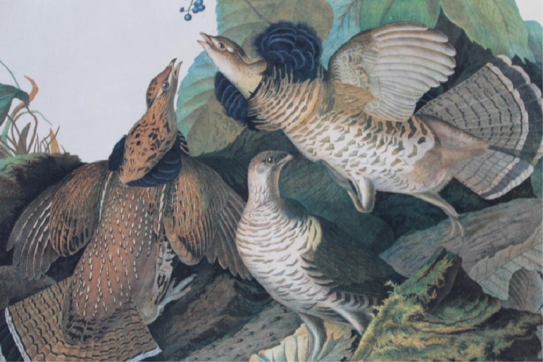 John James Audubon - 2