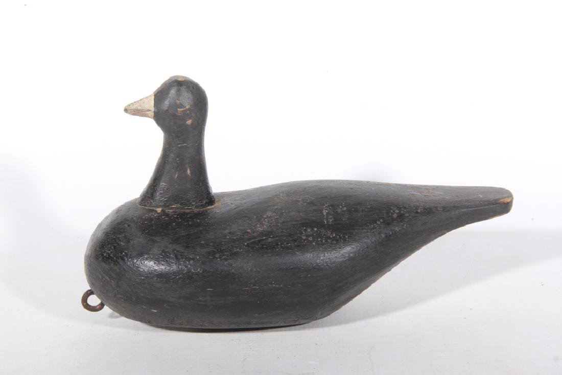 Carved & Painted Black Duck Decoy