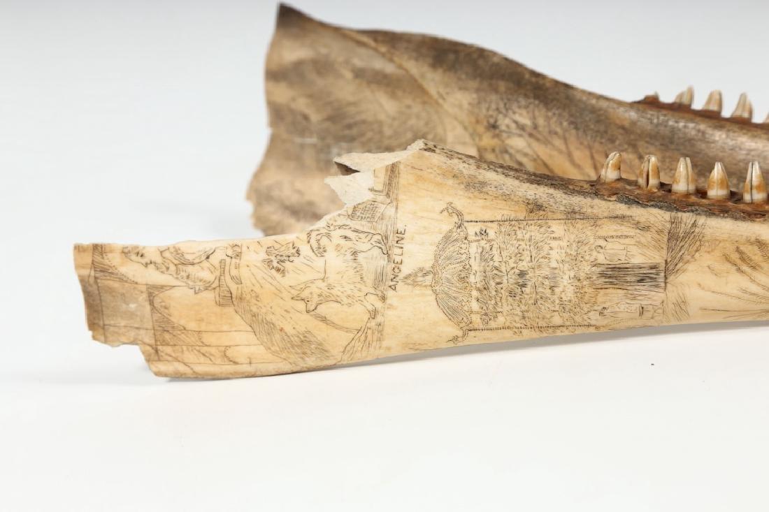 Fine Antique American Scrimshaw Carving on Bone - 3