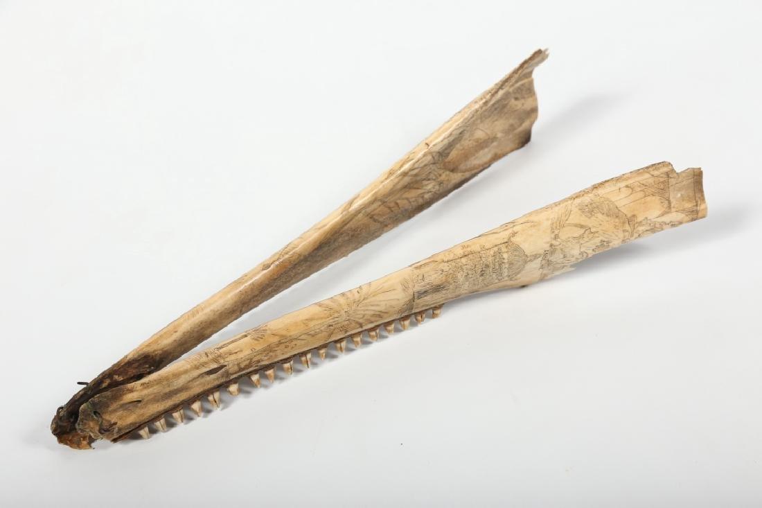 Fine Antique American Scrimshaw Carving on Bone - 5