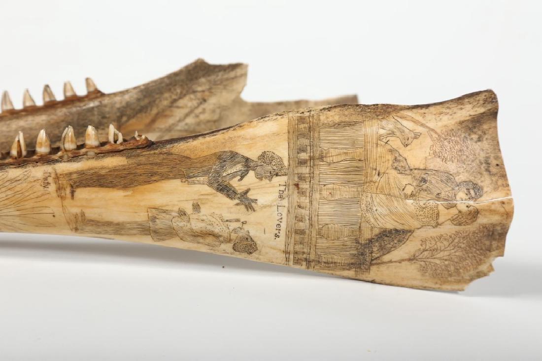 Fine Antique American Scrimshaw Carving on Bone - 7