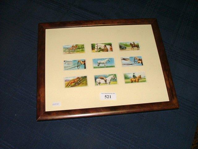 521: Framed  Cigarette Cards, Start Bid €10