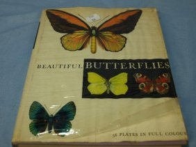 Book, hardcover 'Beautiful Butterflies' with 56 full co