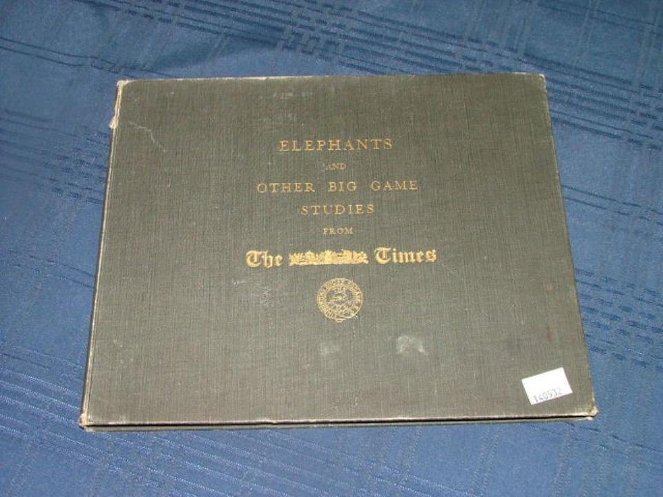 Elephants and other big game studies 1930.