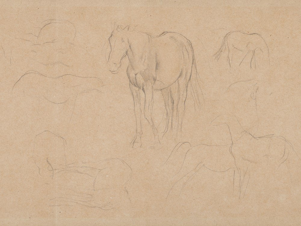 Edgar Degas, Pencil Drawing, Horse Studies, c. 1890