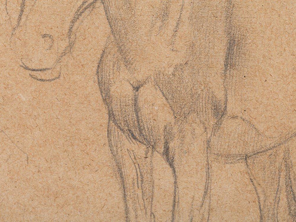 Edgar Degas, Pencil Drawing, Horse Studies, c. 1890 - 7