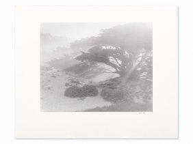 Robert Werling (born 1946) 'pfeiffer Beach' - Big Sur