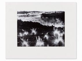Robert Werling (b. 1946), 'hawaii', Signed, 1989