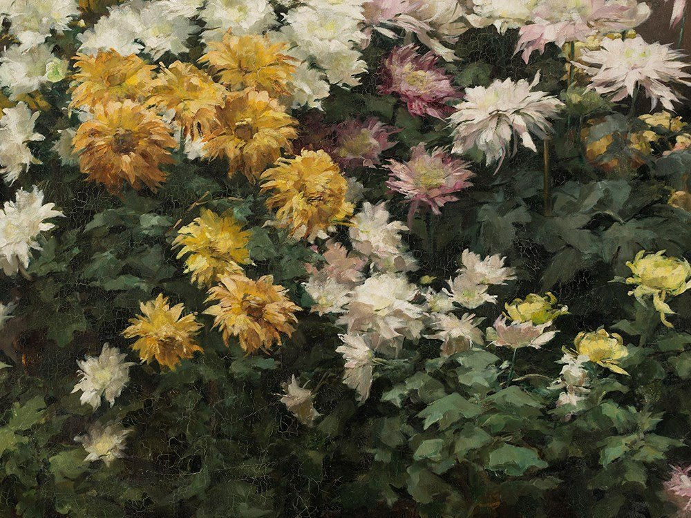 Angelina Drumaux (1881-1959), Chrysanthmes en fleurs, - 5