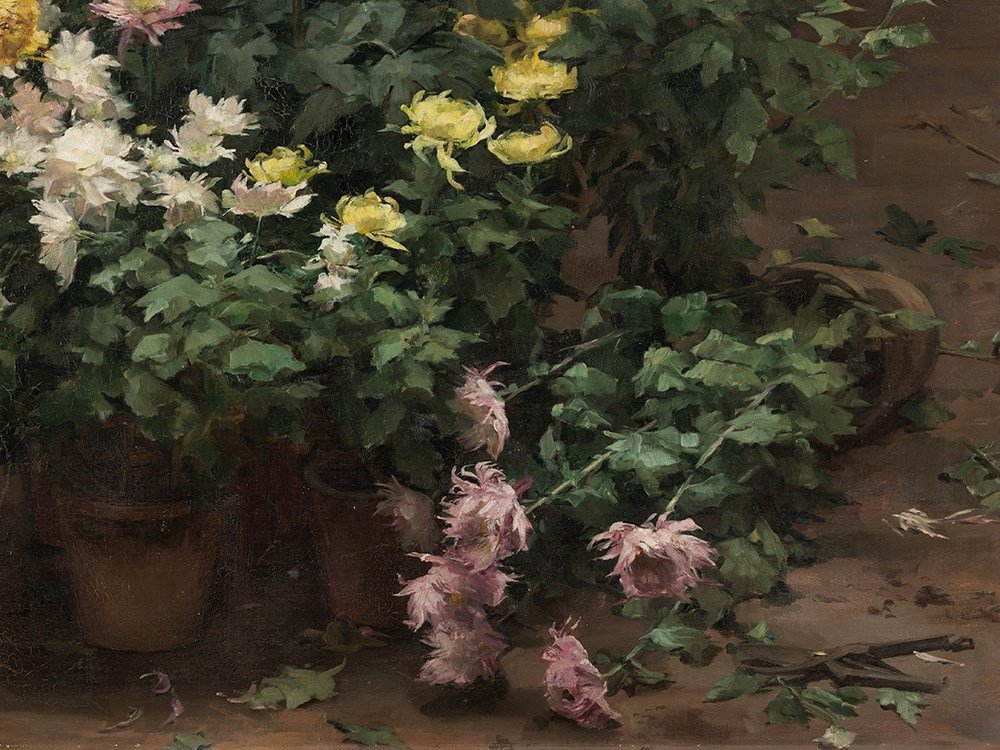 Angelina Drumaux (1881-1959), Chrysanthmes en fleurs, - 7