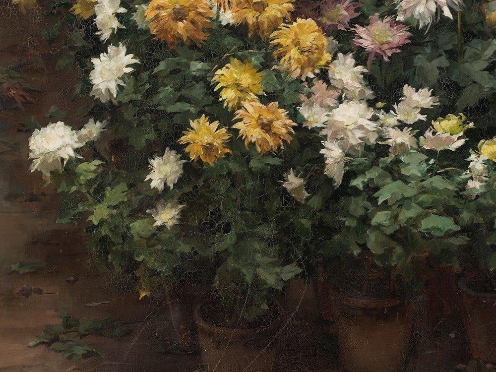 Angelina Drumaux (1881-1959), Chrysanthmes en fleurs, - 8