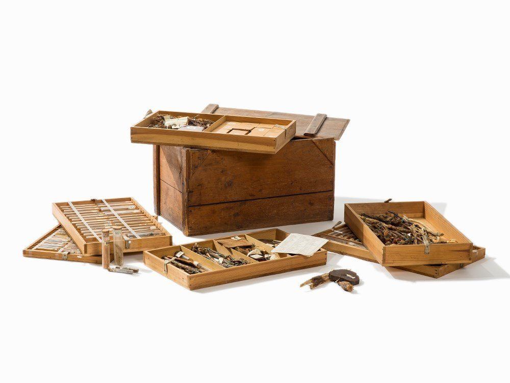 LargePharmacognostic Collection in Wooden Box, Early