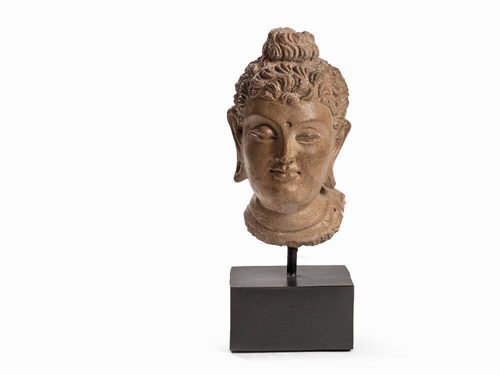 Terracotta Head of a Buddha, Gandhara, 3rd-5th C.