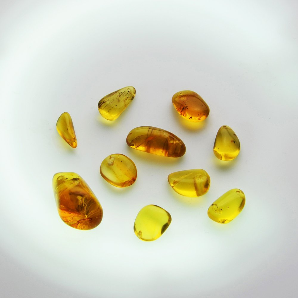 Dominican Republic Gold Amber (10 pieces)
