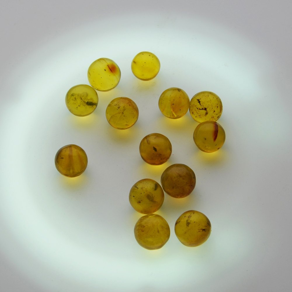 Dominican Republic Gold Amber (13 Pieces)