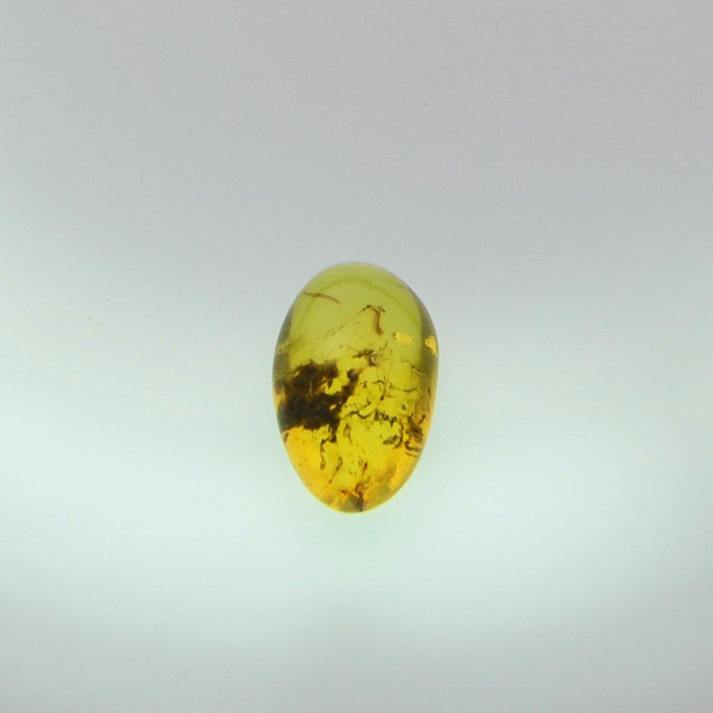Dominican Republic Gold Amber