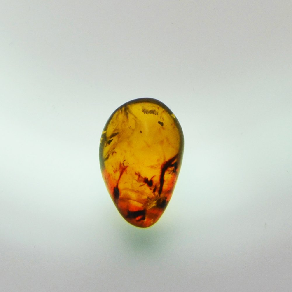 Dominican Republic Gold Amber