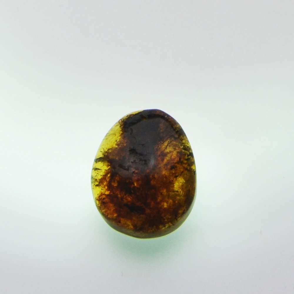 Dominican Republic Green Amber