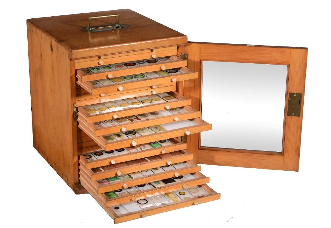 A Victorian polished pine microscope slide cabinet