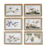 Twelve Chinese pith paper paintings of Birds