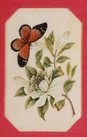 7: A set of four Chinese rice paper paintings each of