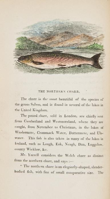 Hofland (Thomas C.) The British Angler's Manual,