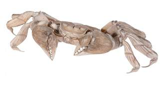 An Japanese articulated Ivory Model of a Crab, width