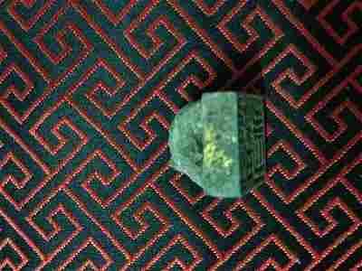 Turtle Print Button
