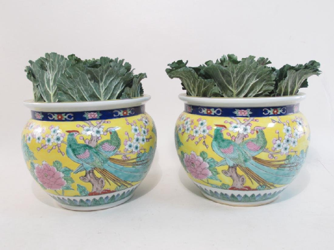 PAIR CHINESE FAMILLE JAUNE PORCELAIN PLANTERS