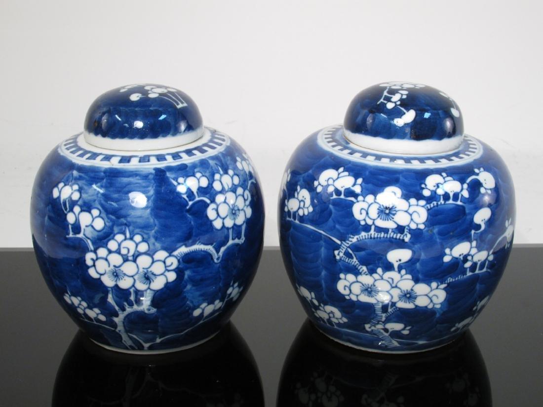 SIX CHINESE QING DYNASTY PRUNUS GINGER JARS - 2