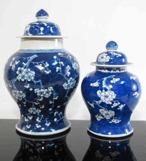 TWO CHINESE QING DYN PORCELAIN PRUNUS GINGER JARS