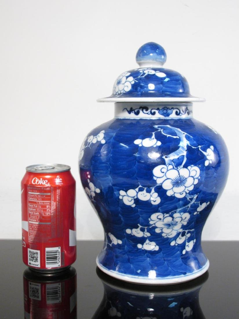 TWO CHINESE QING DYN PORCELAIN PRUNUS GINGER JARS - 7