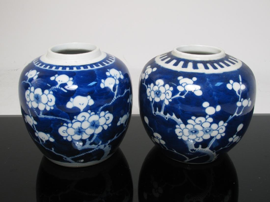 EIGHT CHINESE QING DYNASTY PRUNUS GINGER JARS - 2
