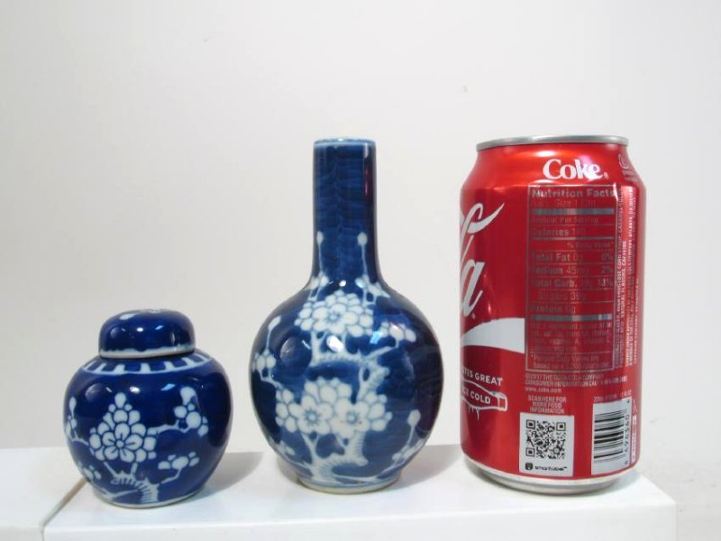 COLLECTION CHINESE PRUNUS CABINET VASES & JARS 17p - 8