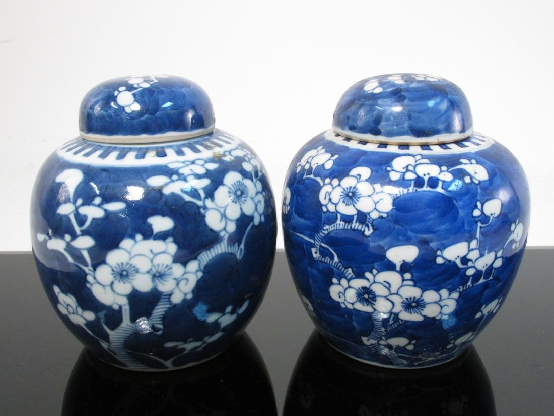 SIX CHINESE QING DYNASTY PRUNUS GINGER JARS - 2