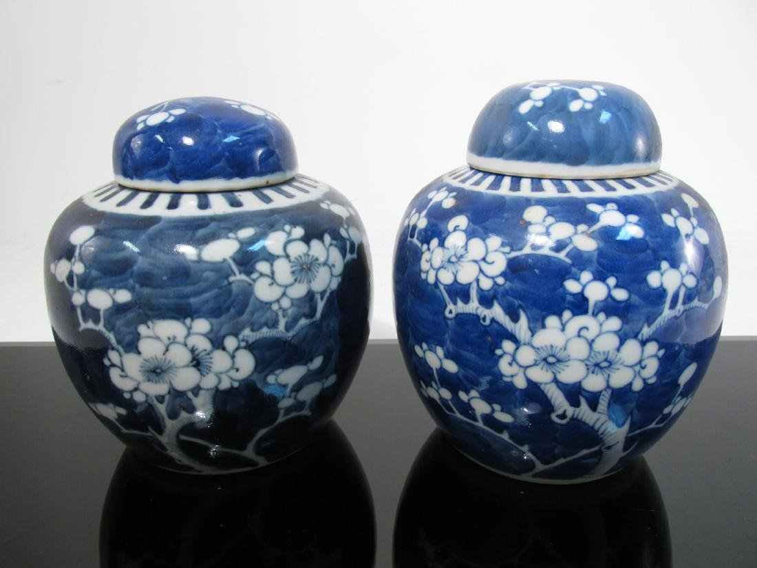 SIX CHINESE QING DYNASTY PRUNUS GINGER JARS - 4