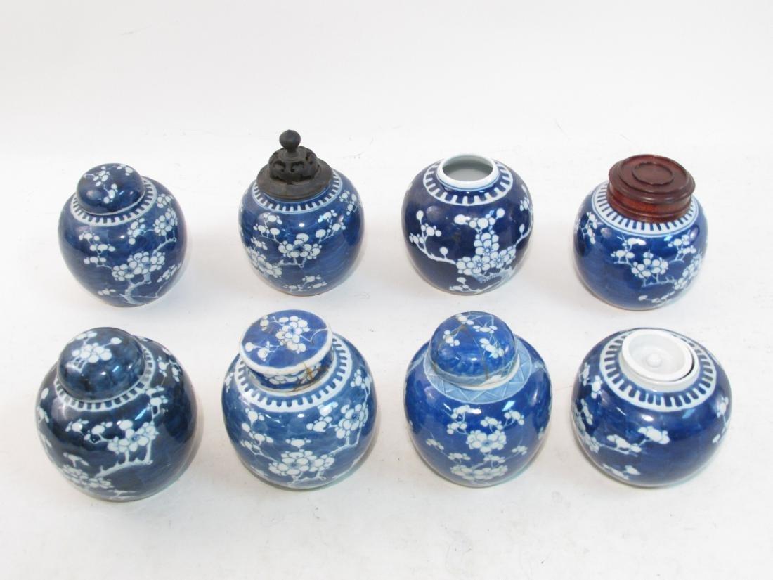 EIGHT CHINESE QING DYNASTY PRUNUS GINGER JARS