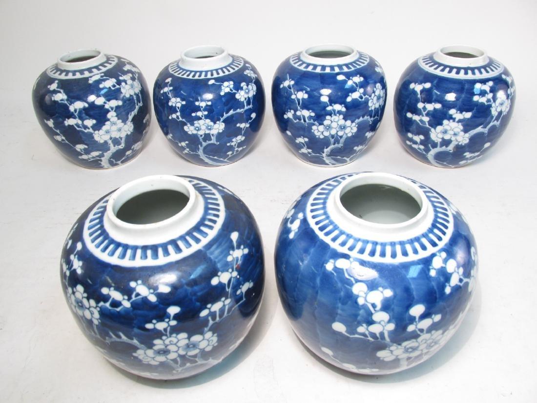 SIX CHINESE QING DYNASTY PRUNUS GINGER JARS